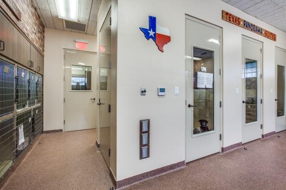 Arlington Veterinary Center (10)