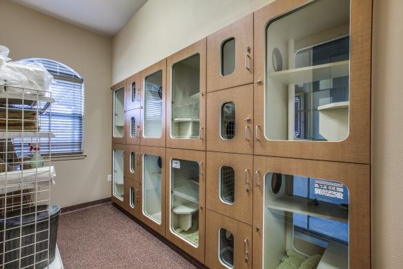 Arlington Veterinary Center (8)