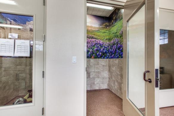 Arlington Veterinary Center (9).jpg